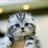 [★SHOT!] '무한도전' 양세형X조세호, 승무원·기상캐스터 변신 출처 : OSEN | 네이버 TV연예 https://t.co/NoYUumHszA